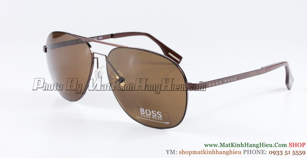 Hugo Boss 0293 tr